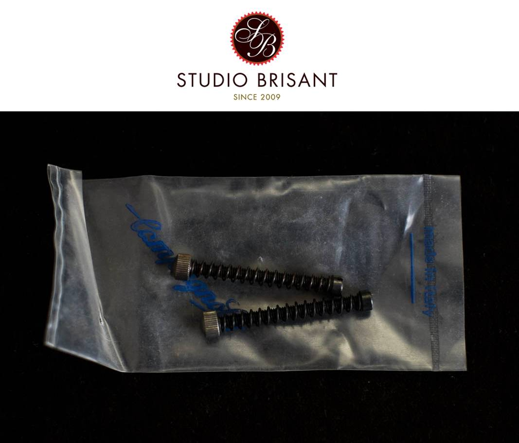 NOS Campagnolo Ausfallendschrauben 37 mm 2 Stück Dropout Adjuster Set Long Small Head Screws Vintage